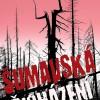 Roman Kozák – Šumavská přicházení