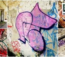 Ukázka z naší e-knihy: Pavel Brycz – Sloni mlčí…
