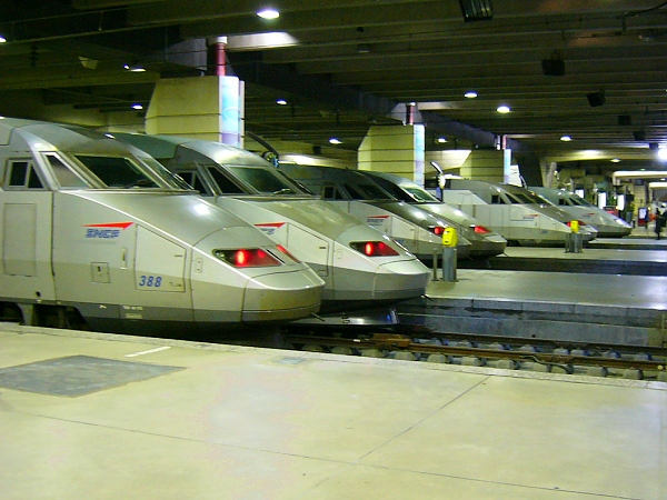 francie2005-06